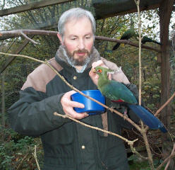 David with a Schalow's Turaco. Click to hear and enlarge.