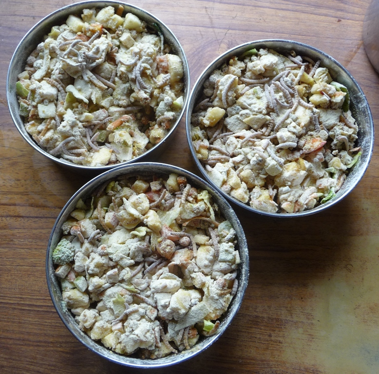 Fruit and vegetable mix with extra dried mealworms and A21 powder, for pairs rearing chicks