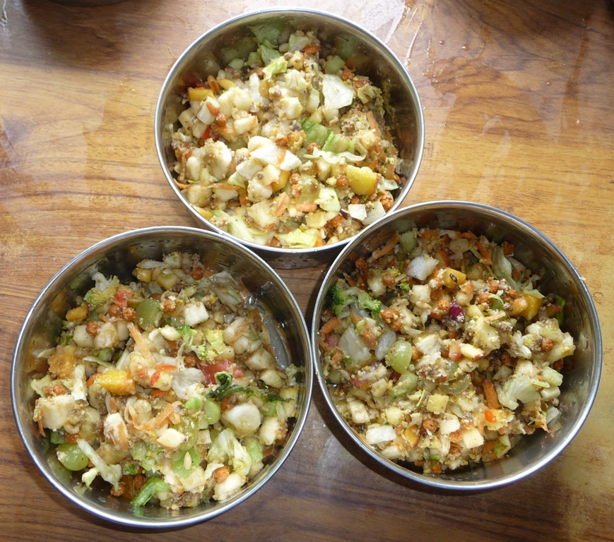 Fruit and vegetable mix in bowls for adult turacos